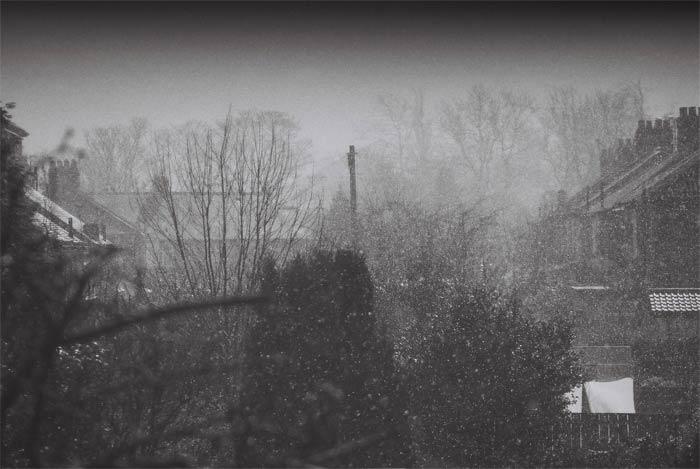 snow-(1)