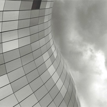 sage-roof-(3)
