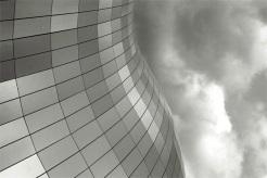 sage-roof-(4)