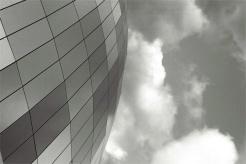 sage-roof-(5)