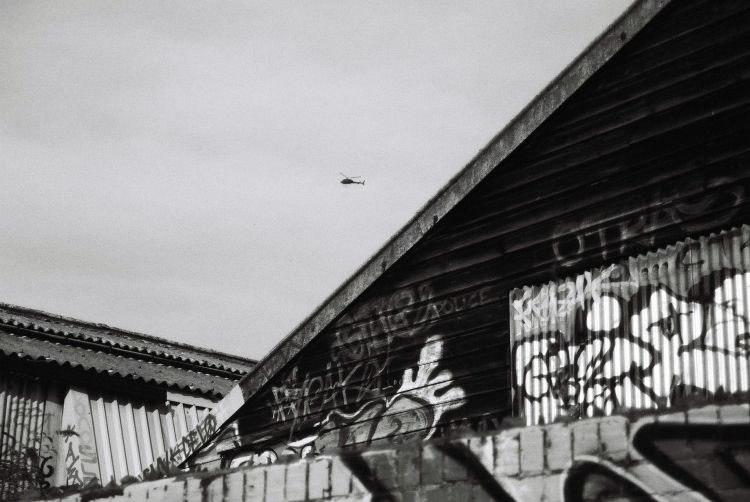 grafitti16