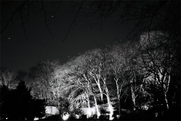 gardens-2012-(22)