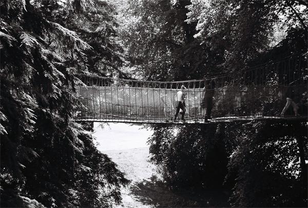 rope-bridge2