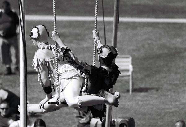 acrobat-(15)