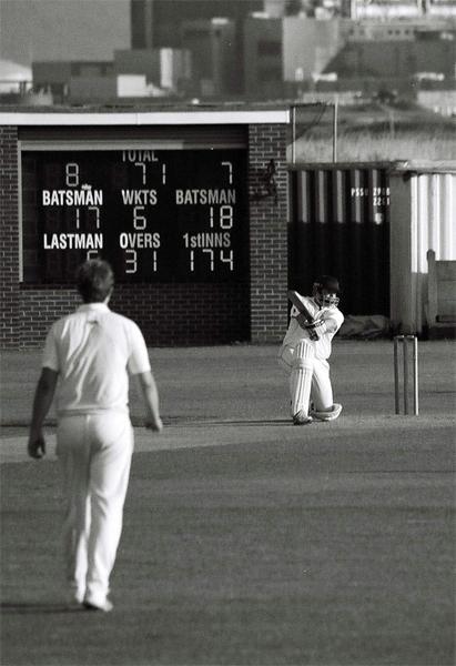 cricket-(5)