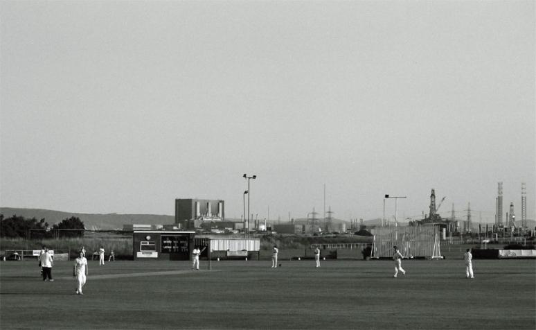cricket-(6)