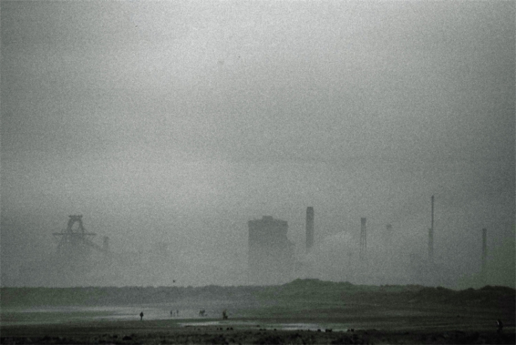 beach-mist
