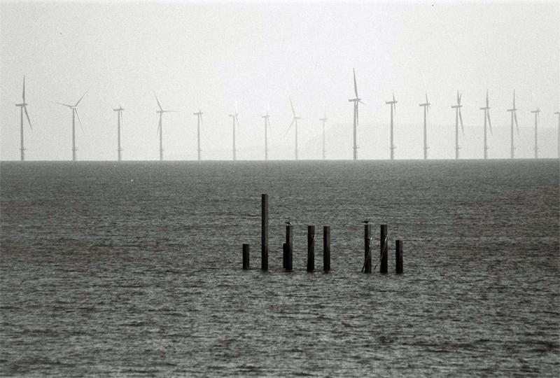 wind-farm-00011