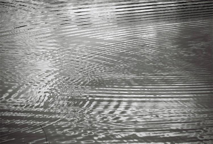 ripple-(2)