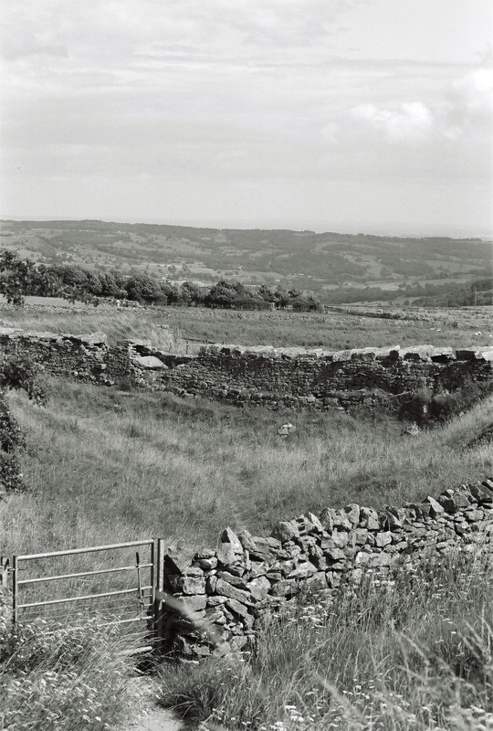 north-yorkshire-(3)