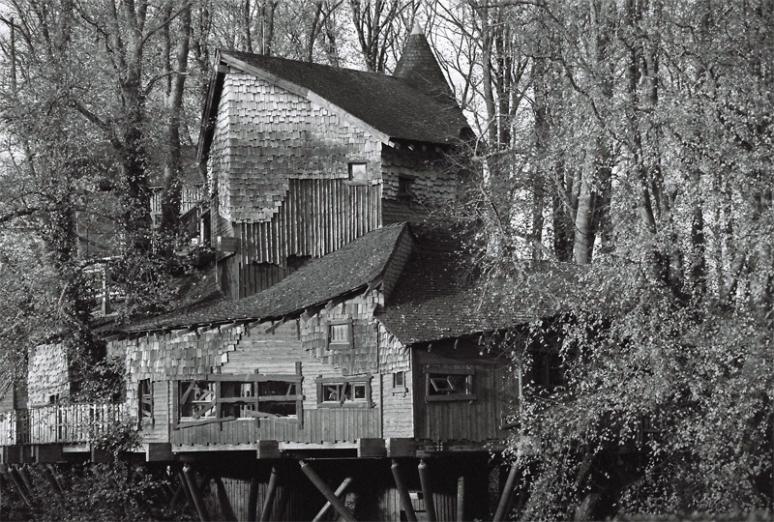 tree-house0005