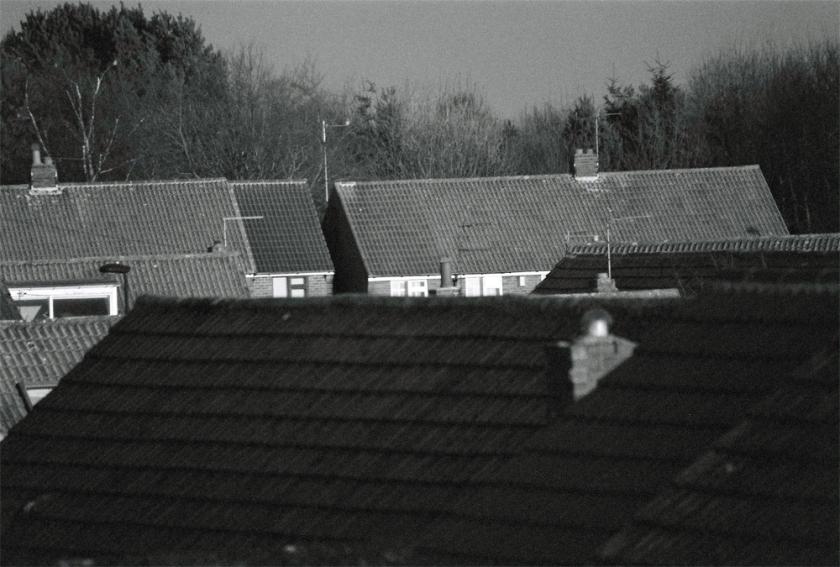 houses-(1)