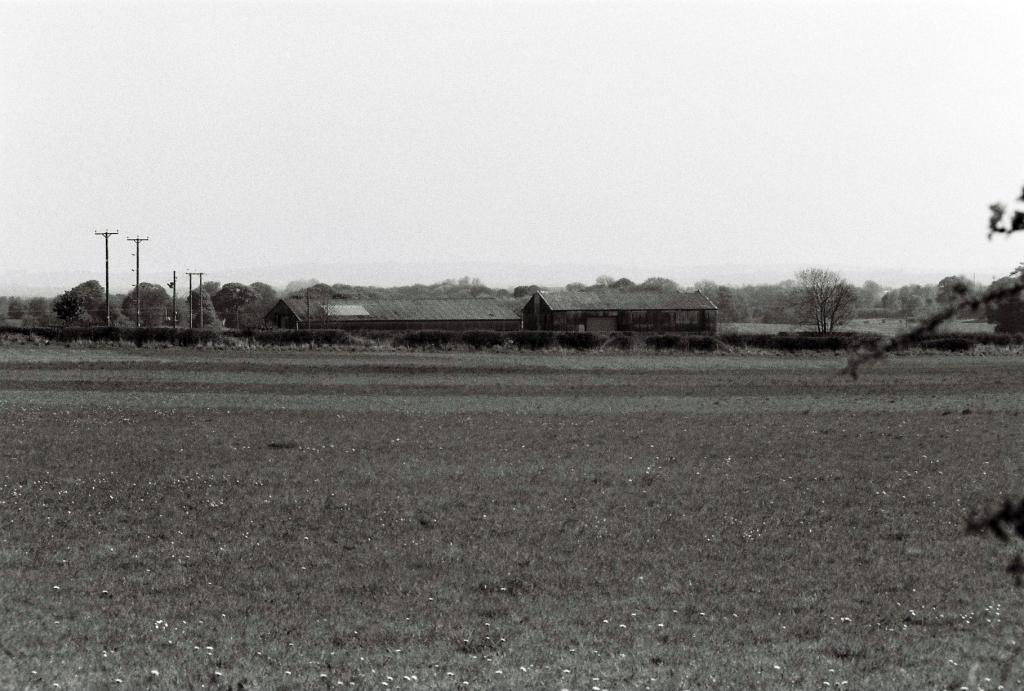 durham-fields-2