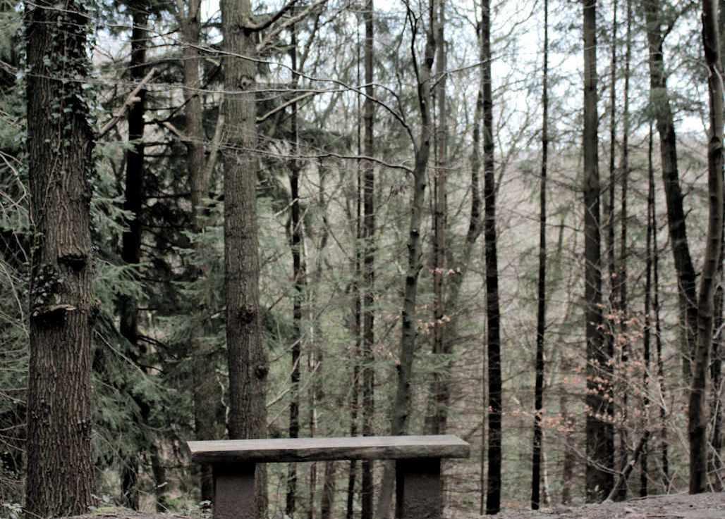 Walks in Isolation